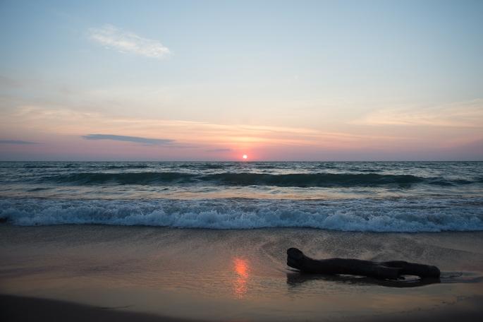 Sunrise-and-Log-2